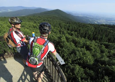 Englmarer Trails