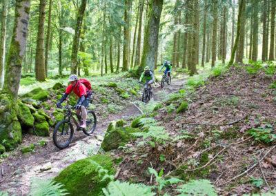 downhill-vom-geisskopf