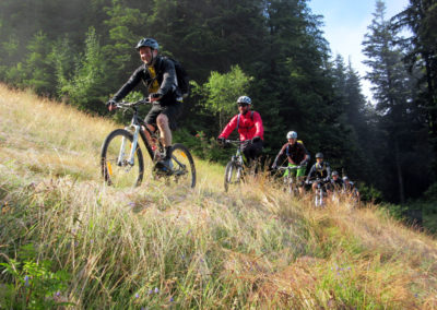 herbst-wiesen-trail