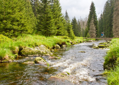 im Nationalparks Šumava auf der tschechischen Seite