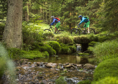 trail-am-bach