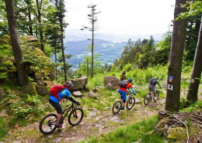 trail-downhill