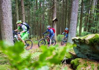 Fahrszene im Wald unter Wegkreuz