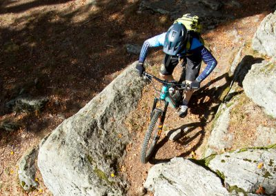 E-MTB Arberland Trails