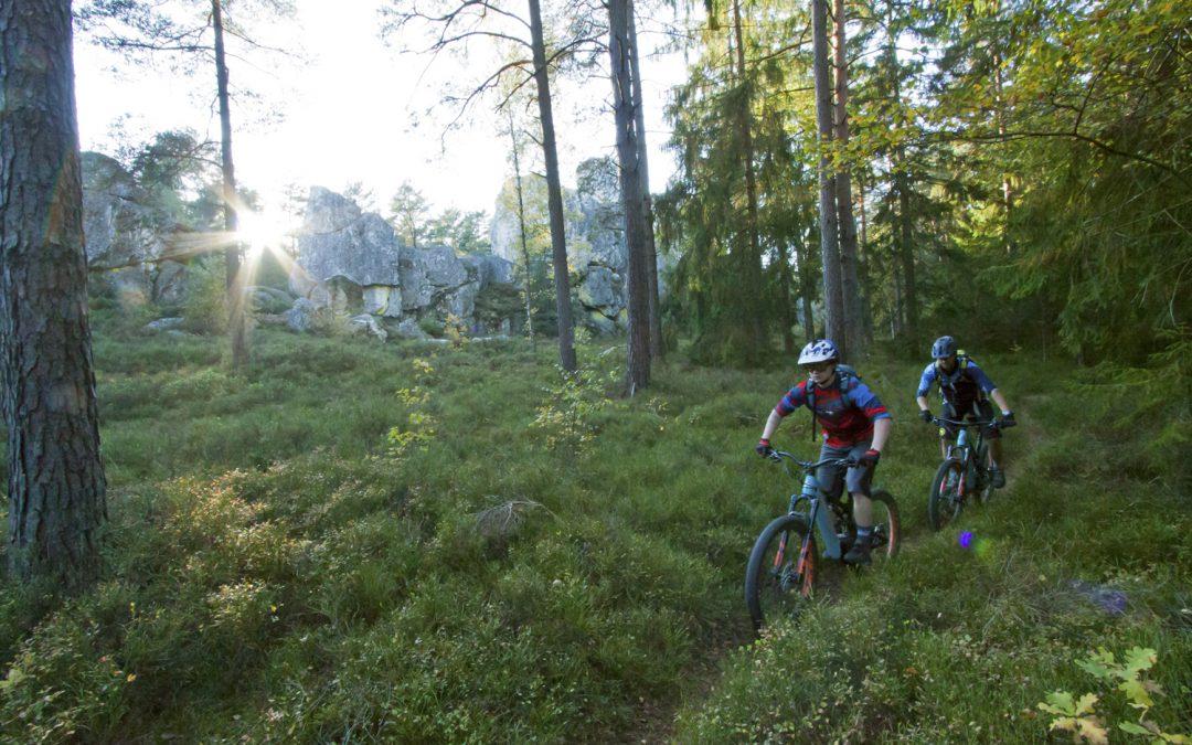 E-MTB Trail Tour