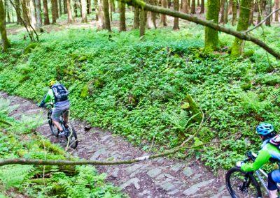 Waldschlössl Tour
