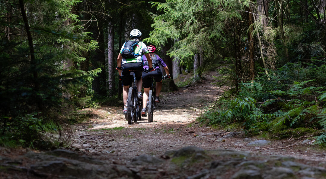 E-MTB Englmarer Trails